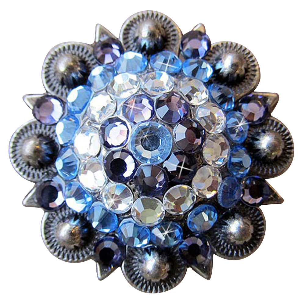 C-TY04 Set Of 4 Western Screw Back Concho Sapphire Berry Crystals Cowgirl 1In Se